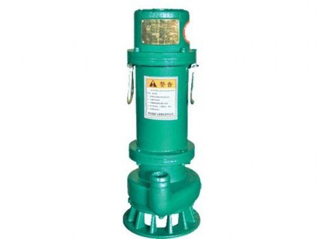 点击查看详细信息<br>标题:BQS(BQW)矿用隔爆型排污排沙潜水电泵 阅读次数:1274